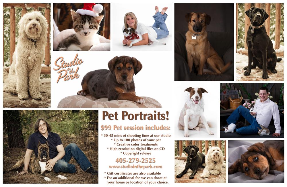 Studio in the Park Pet Portraits